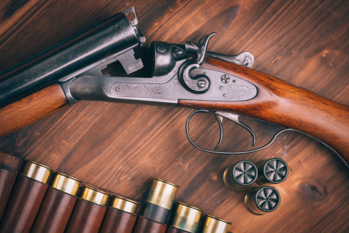 guns for sale reloading supplies in albany ny